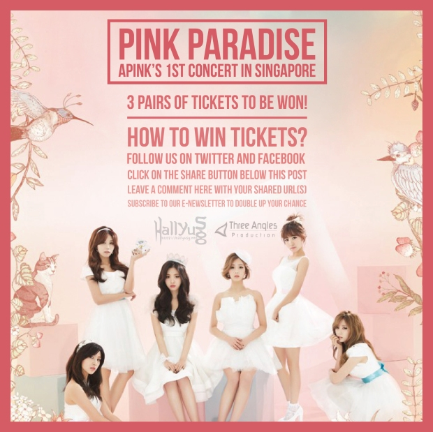 apink giveaway poster-01